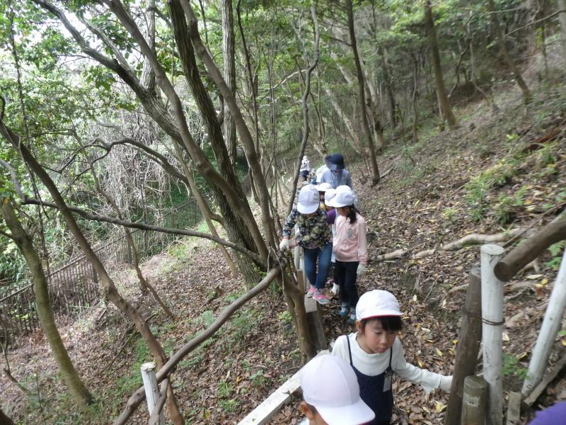 多奈川小学校1・2年生遠足 in うみべの森探検_c0108460_16060049.jpg