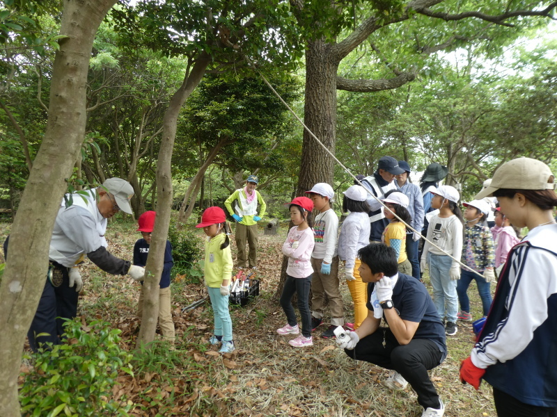 多奈川小学校1・2年生遠足 in うみべの森探検_c0108460_16062623.jpg