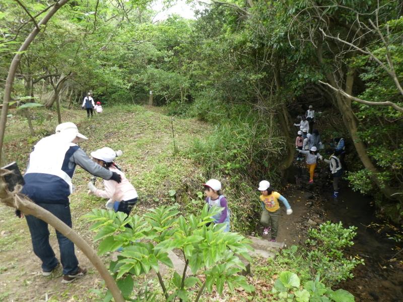 多奈川小学校1・2年生遠足 in うみべの森探検_c0108460_16062844.jpg