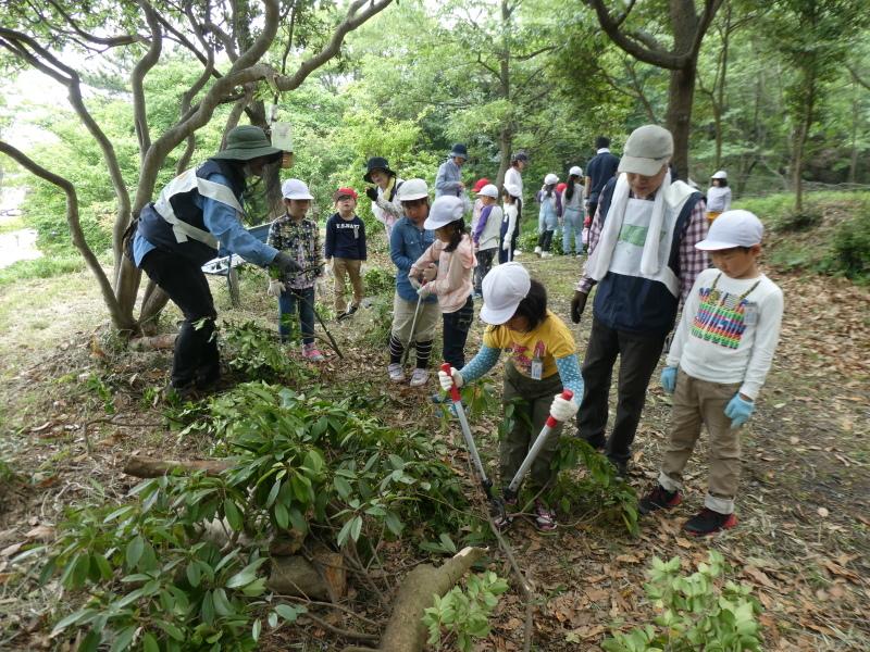多奈川小学校1・2年生遠足 in うみべの森探検_c0108460_16120452.jpg