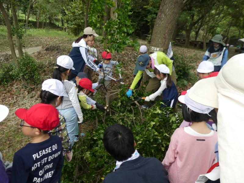 多奈川小学校1・2年生遠足 in うみべの森探検_c0108460_16120681.jpg