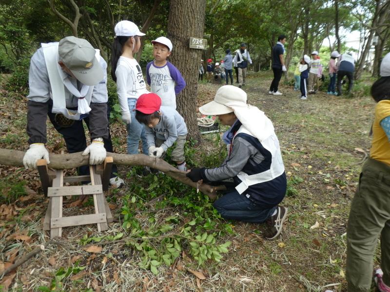 多奈川小学校1・2年生遠足 in うみべの森探検_c0108460_16124248.jpg