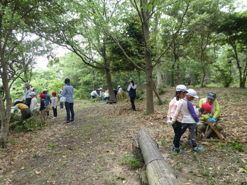 多奈川小学校1・2年生遠足 in うみべの森探検_c0108460_16124381.jpg