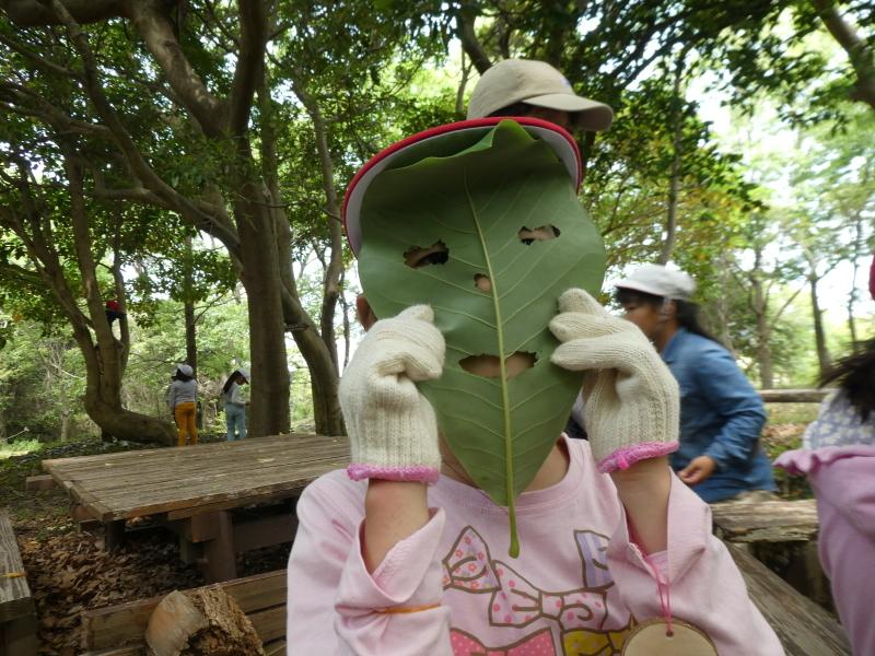 多奈川小学校1・2年生遠足 in うみべの森探検_c0108460_16152440.jpg