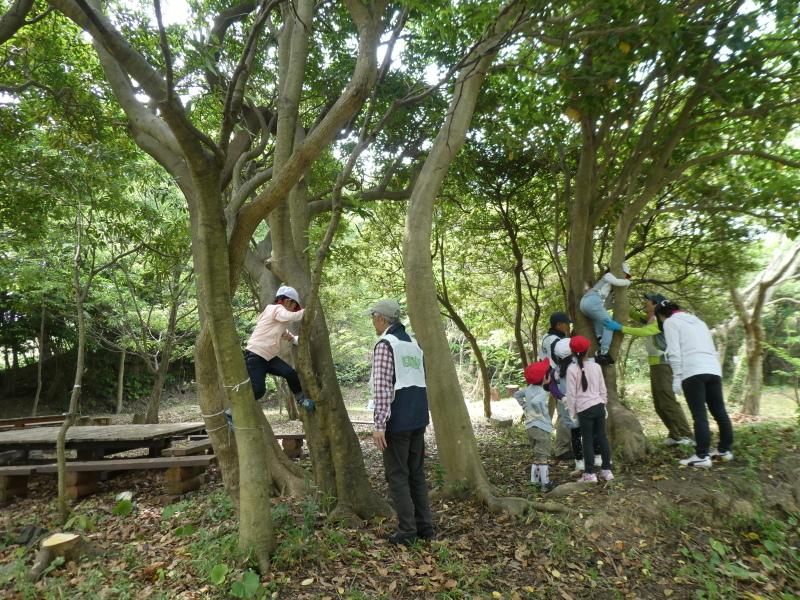 多奈川小学校1・2年生遠足 in うみべの森探検_c0108460_16191238.jpg