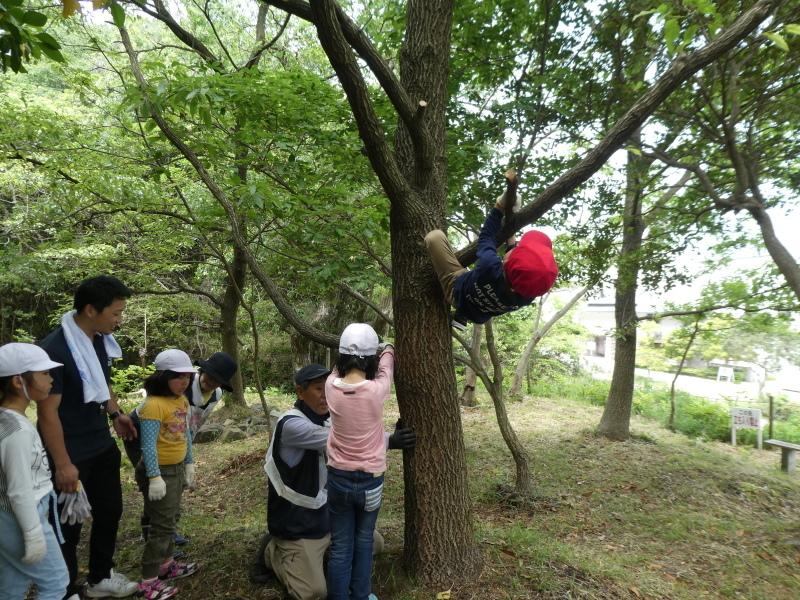 多奈川小学校1・2年生遠足 in うみべの森探検_c0108460_16194255.jpg