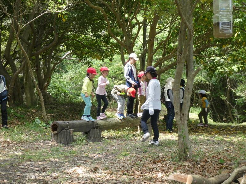 多奈川小学校1・2年生遠足 in うみべの森探検_c0108460_16210251.jpg