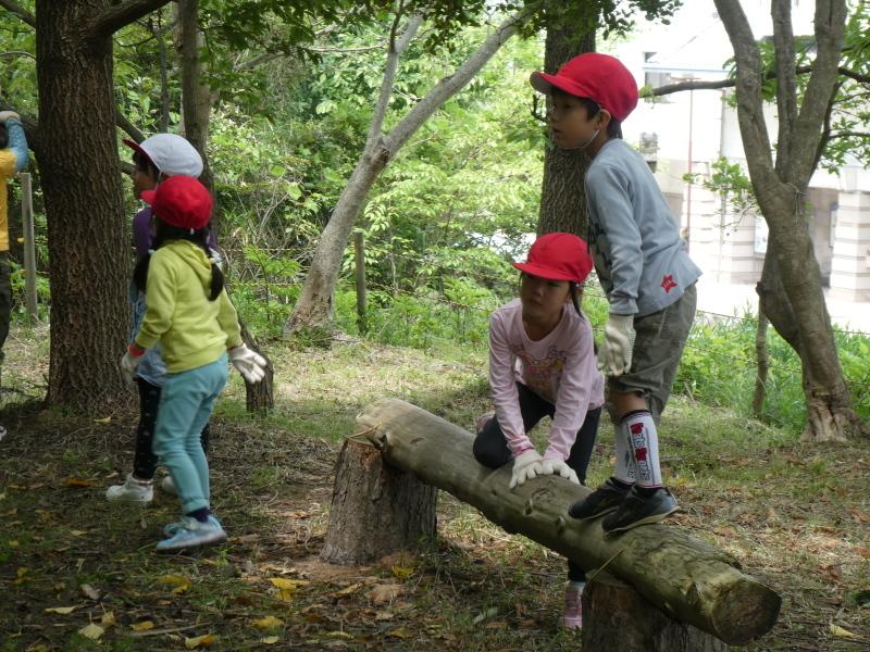 多奈川小学校1・2年生遠足 in うみべの森探検_c0108460_16210420.jpg