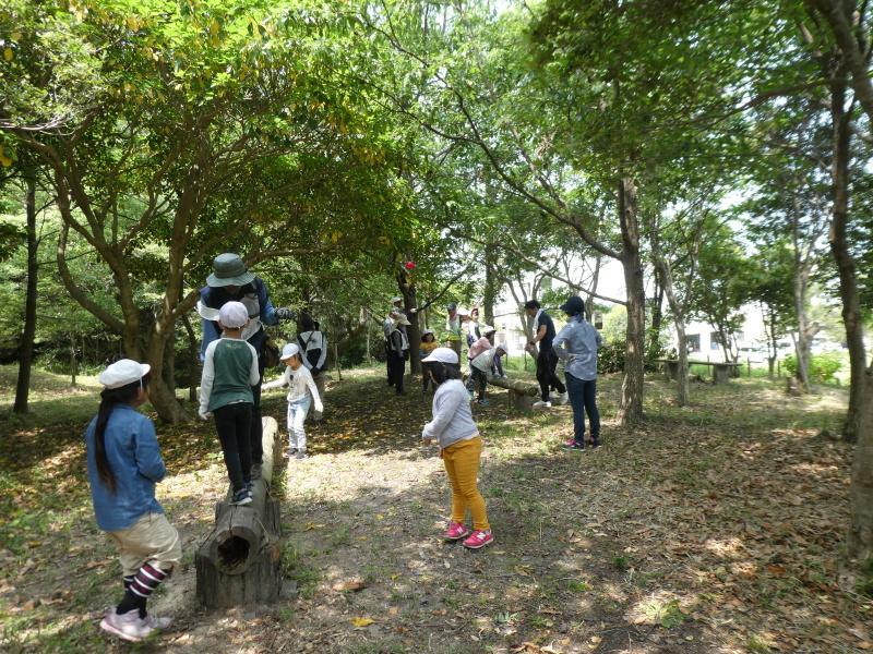 多奈川小学校1・2年生遠足 in うみべの森探検_c0108460_16290319.jpg