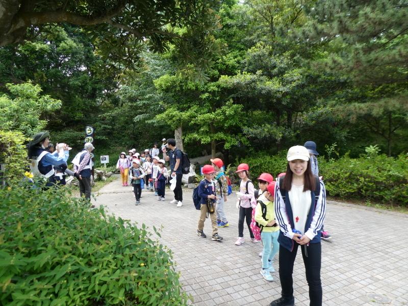多奈川小学校1・2年生遠足 in うみべの森探検_c0108460_16312322.jpg