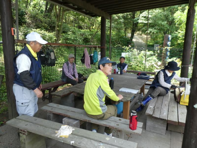 多奈川小学校1・2年生遠足 in うみべの森探検_c0108460_16315282.jpg