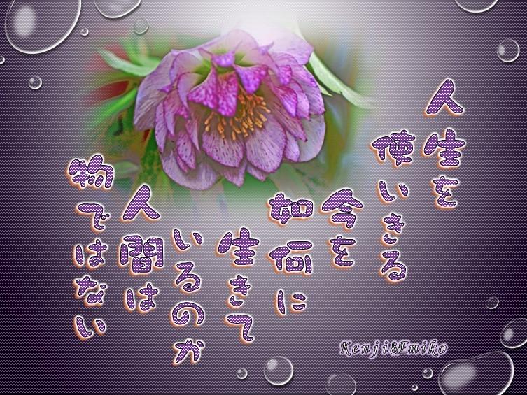 f0214467_09493930.jpg