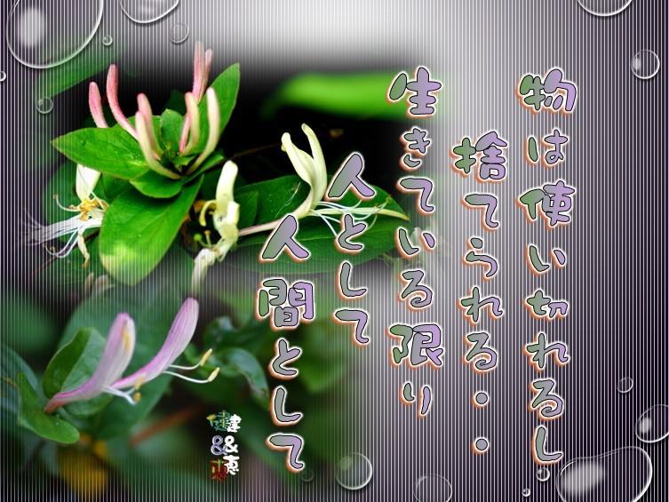 f0214467_09501568.jpg