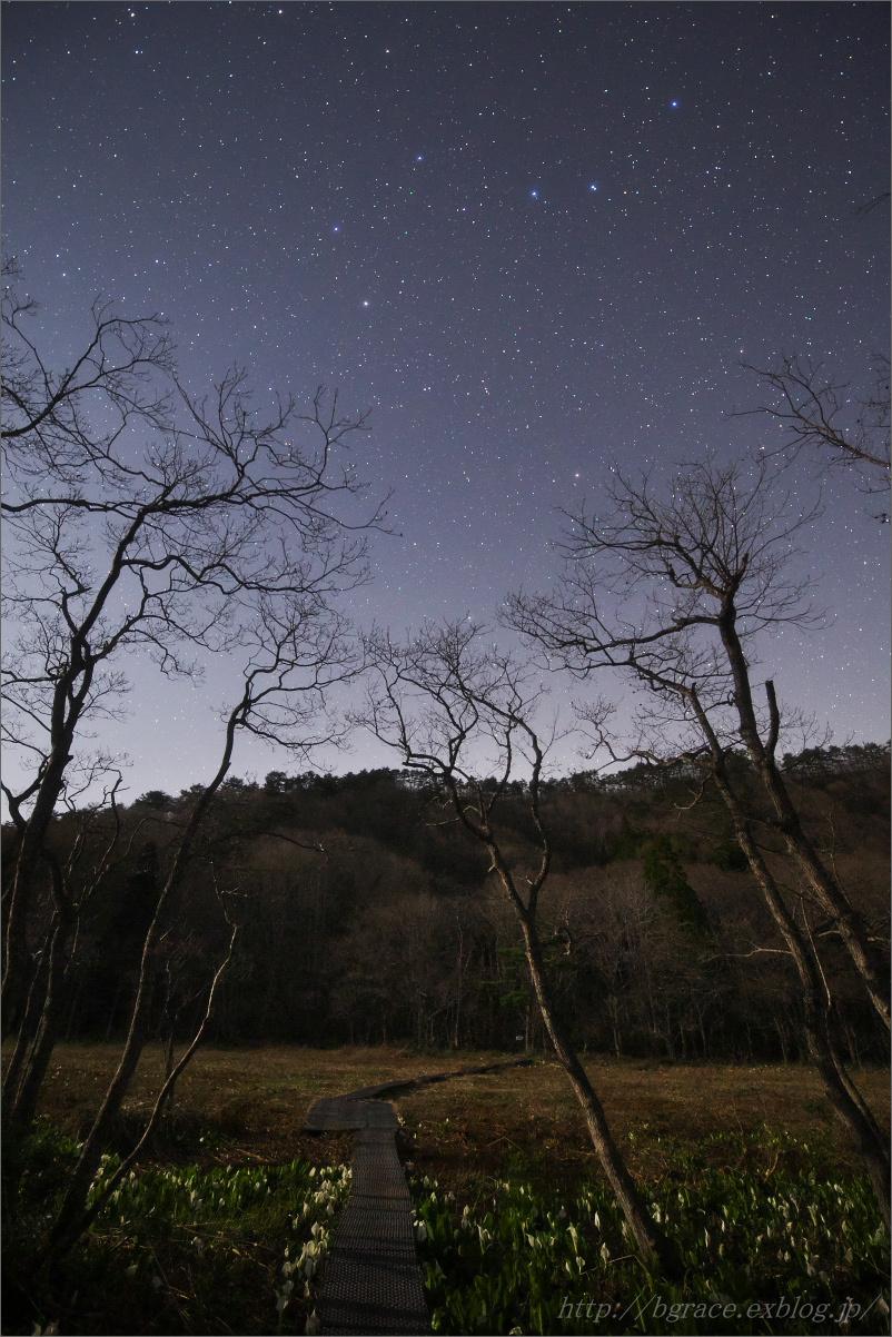 水芭蕉 星景.3_b0191074_22343717.jpg