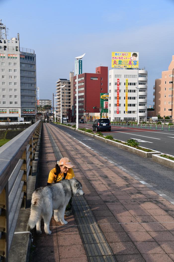 暑かった、がんばった、きょうのお散歩 (*^_^*)_c0049299_21532882.jpg