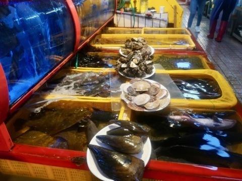 ウヨンのふるさと釜山旅⑦ 〜チャガルチ市場でヒラメとタコに惚れる〜_e0126009_07345698.jpg