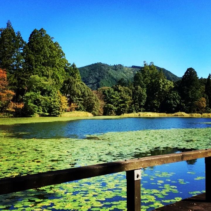室山熊野神社と麻生池。_b0125443_17581673.jpeg