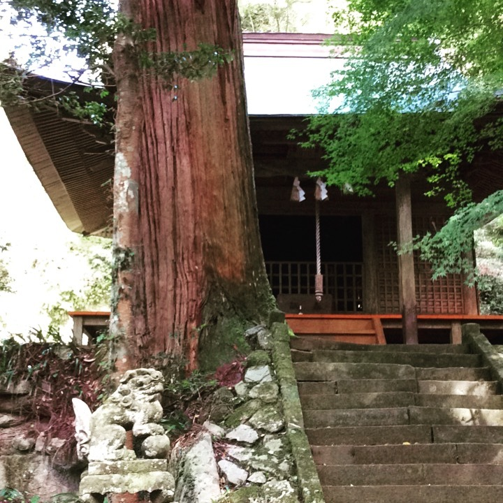 室山熊野神社と麻生池。_b0125443_17593335.jpeg