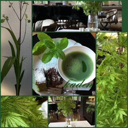 五月花伝塾_d0237757_01063018.jpeg