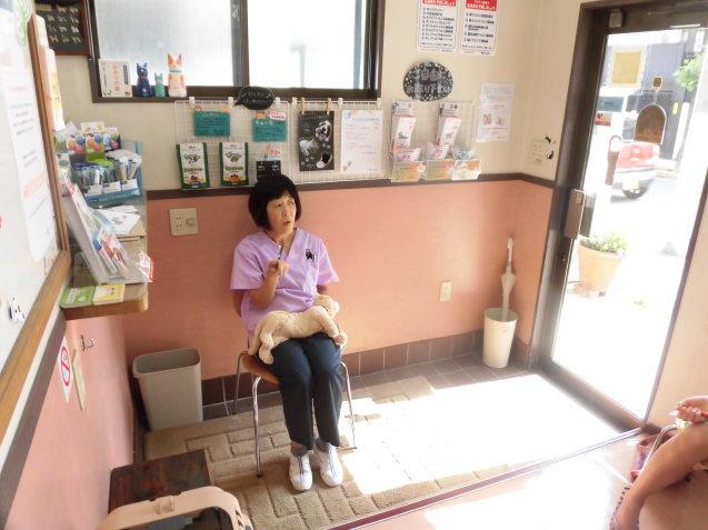 猫塾でした(5/19)_e0367571_20310441.jpg