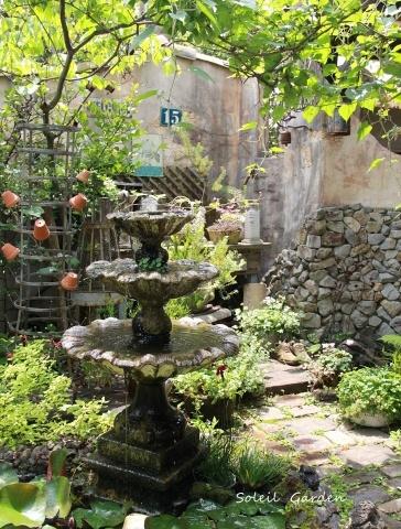 ◆泉南の有名な3つの園芸店巡り・・・『ロベリア』『金久』『リル・シュル・ラ・リング』_e0154682_22480195.jpg