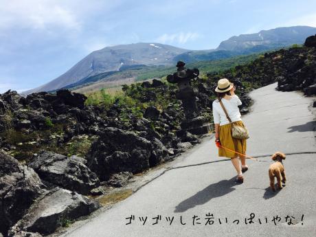 軽井沢旅行。2日目。北軽井沢。_b0370192_05131771.jpg