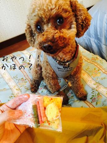 軽井沢旅行。2泊目ペンションリーブル。_b0370192_05280553.jpg