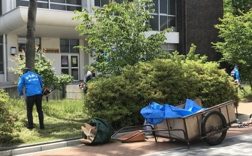 キャンパスの清掃活動は暑かった_a0346704_23362771.jpg