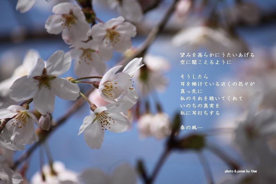 f0351844_13213363.jpg