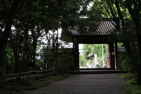 あやめ池商友会 再訪(奈良県奈良市)_c0001670_18021671.jpg