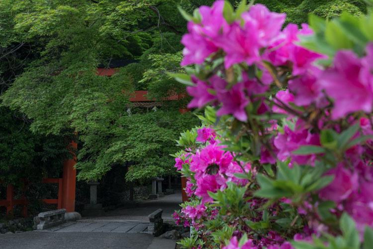 大田神社_e0051888_04562515.jpg