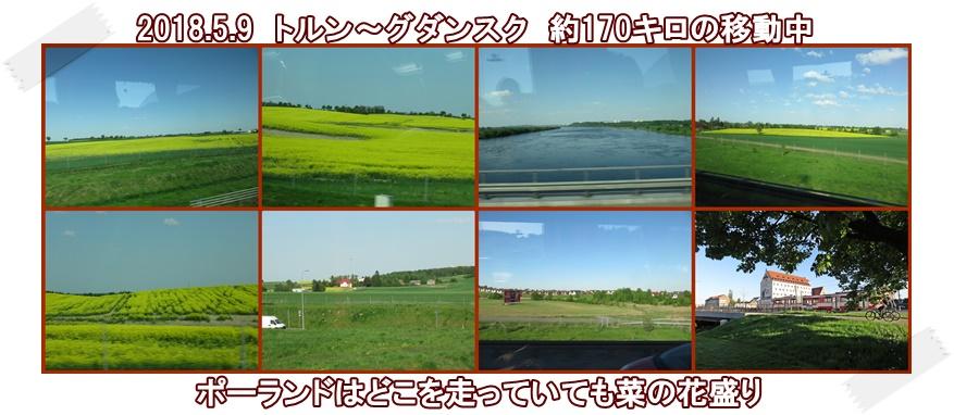 a0052666_1622472.jpg