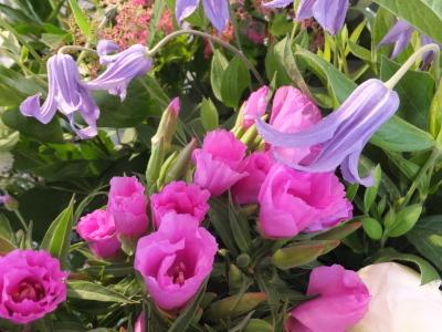 オークリーフ(5月のバラ)_f0049672_16101398.jpg