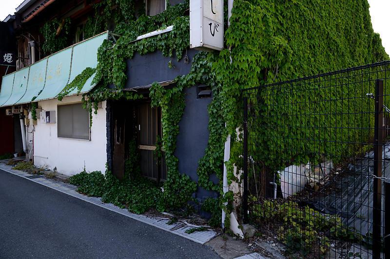 5LinksでGo~!@近江鉄道沿線ポタリング 其の五_f0032011_19591742.jpg
