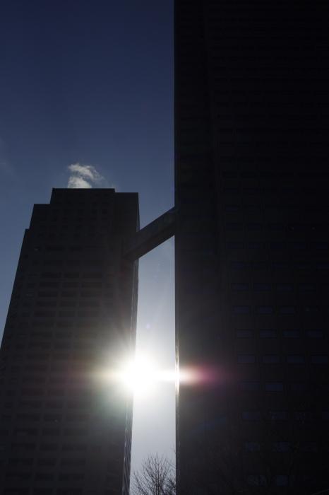 東京の川5_d0185744_17354547.jpg