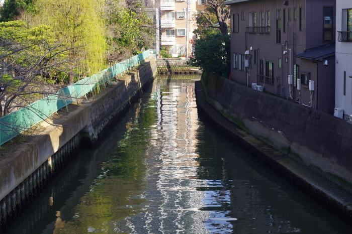 東京の川5_d0185744_17553309.jpg