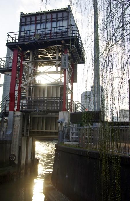 東京の川5_d0185744_18010452.jpg