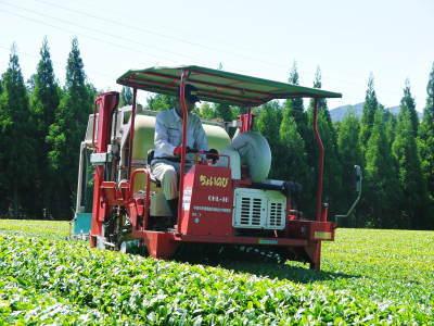 菊池水源茶 平成30年度の茶摘みの様子!まもなく新茶の販売開始です‼_a0254656_16110640.jpg