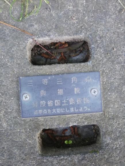 奈良県文化会館にブロガーさんの写真展を見に行く_c0001670_15185721.jpg
