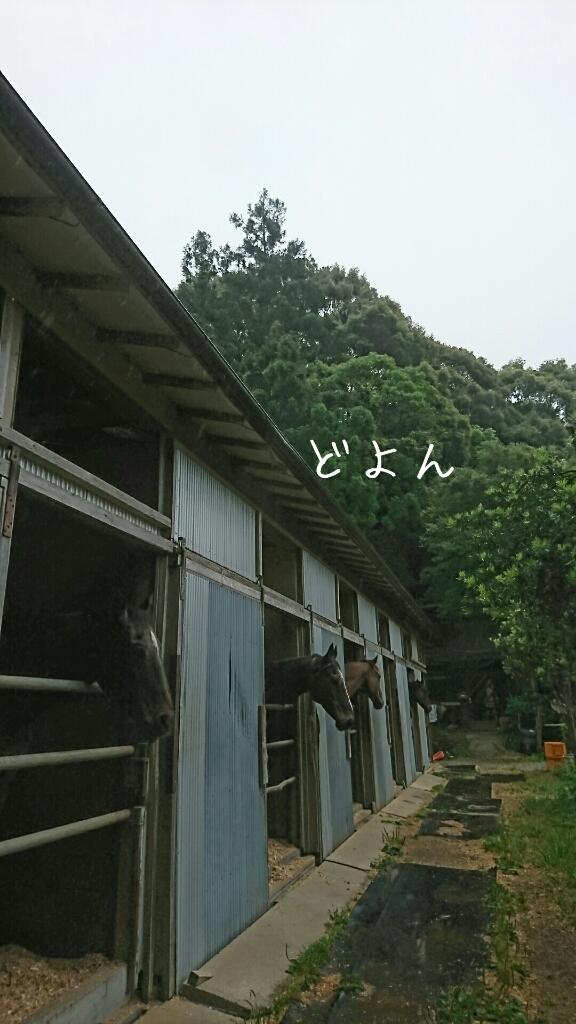 b0187620_20115082.jpg