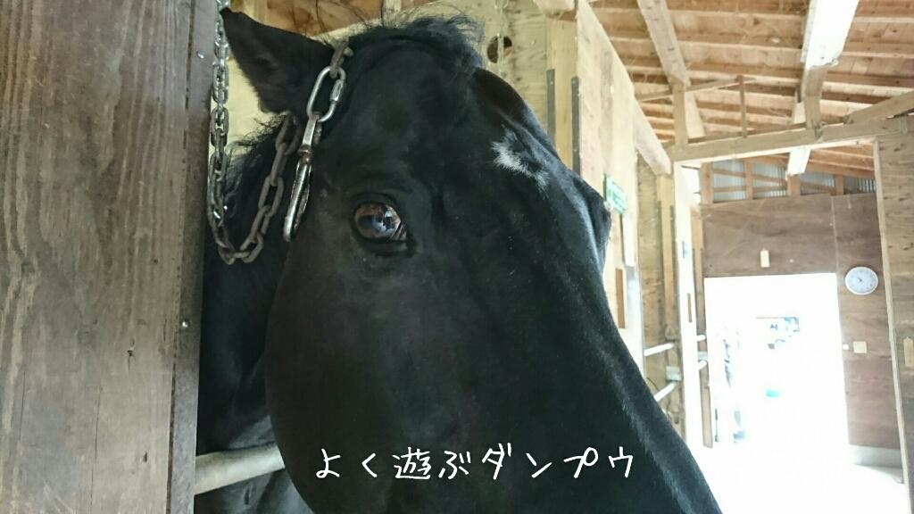 b0187620_20122691.jpg
