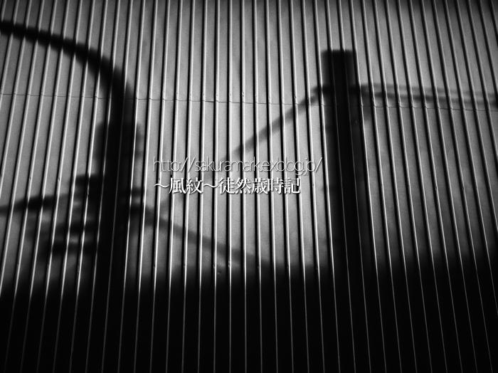 夕影幽影。_f0235723_20583820.jpg