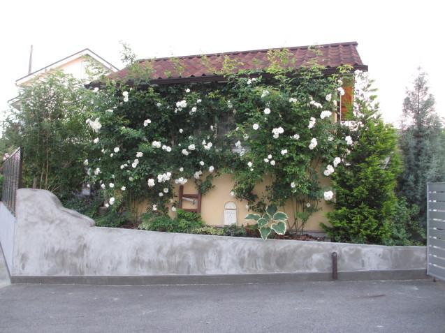 ガーデンハウス北側、ブロック土留めを平坦にしてもらいました_a0243064_07171711.jpg