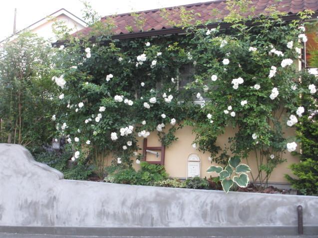 ガーデンハウス北側、ブロック土留めを平坦にしてもらいました_a0243064_07175017.jpg