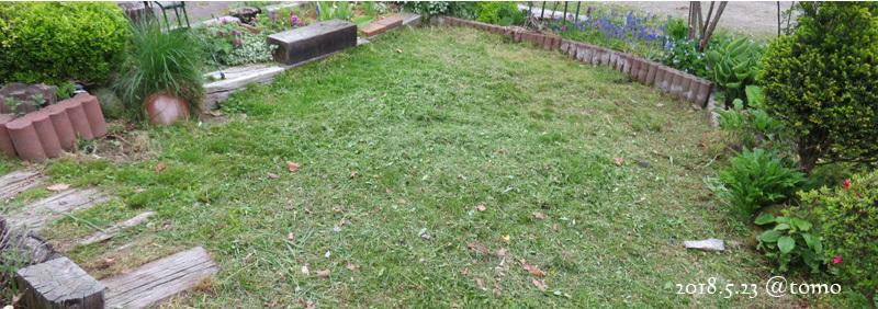 草刈り第一弾_f0067179_17425909.jpg