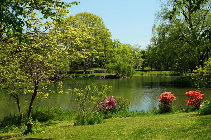 中島公園_d0162994_05431701.jpg