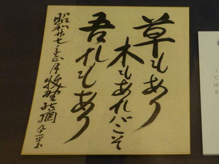 仁淀川編(29):佐川(15.8)_c0051620_21513555.jpg