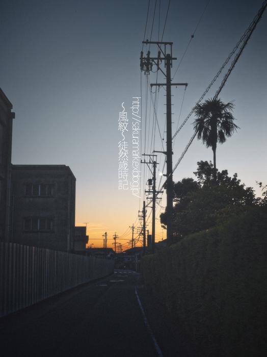 薄暮の夕闇通り。_f0235723_2134650.jpg