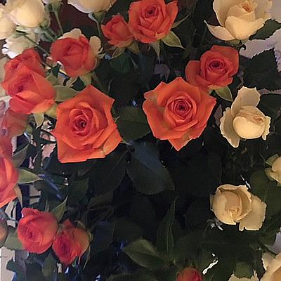 薔薇_d0248537_15390609.jpg