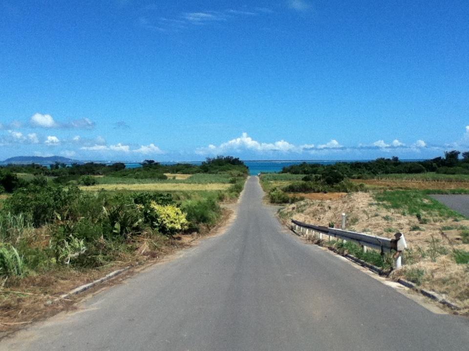 石垣5島めぐり・・最後の小浜島観光とリゾート・ホテル「はいむるぶし」 _c0011649_16180319.jpg